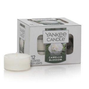 🕯Yankee Candle Tea Lights - Camellia Blossoms